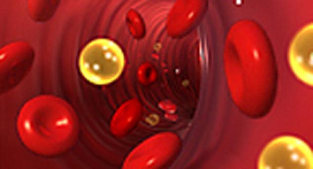 повышение холестерина в крови у женщин