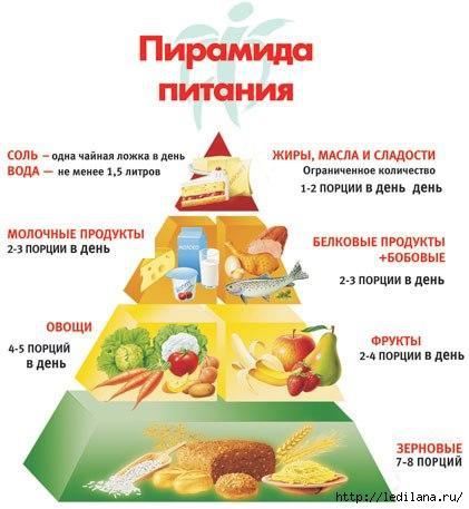 пирамида питания (421x457, 94Kb)