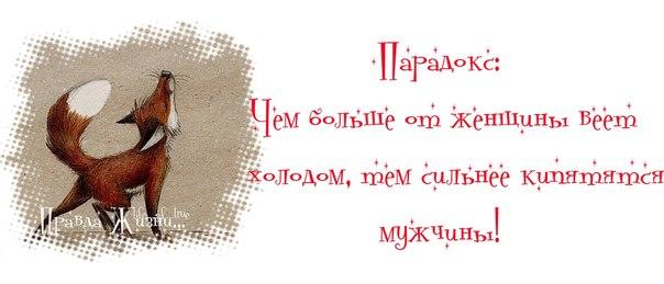 5087732_6tUNDn_ANM (604x259, 32Kb)