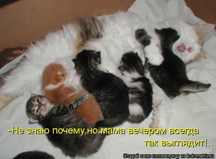 http://img0.liveinternet.ru/images/attach/c/7/97/817/97817054_large_142_NU_PRYAM_KAK_DURA.jpg