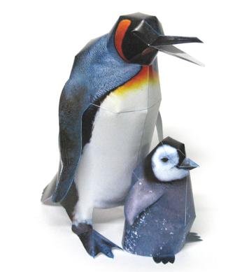 Королевский пингвин.  Категория.  Животные.
