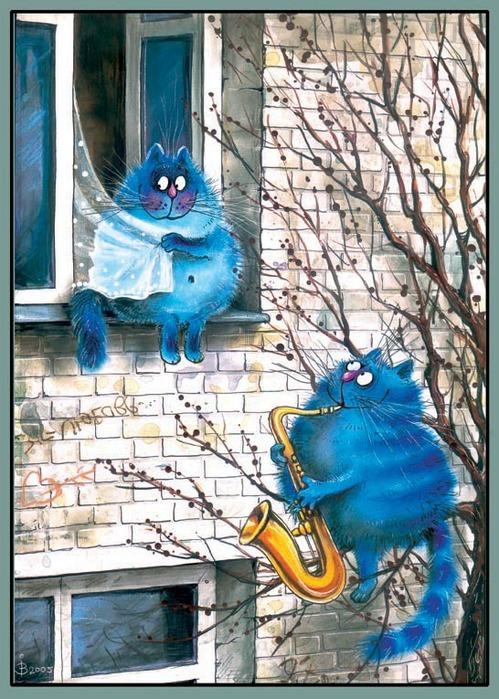 смешные коты картинки 1 (499x700, 152Kb)