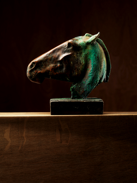 4121583_horse_head_art_6 (525x700, 352Kb)