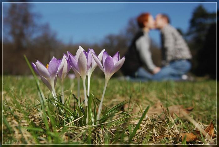 Картинки начала весны красивые