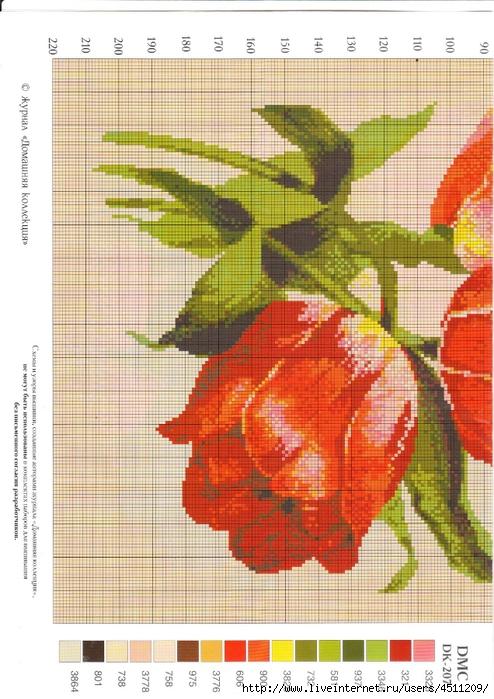 Красные тюльпаны.