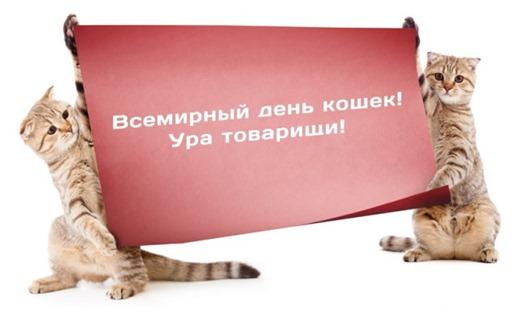 4814775_koshek_450 (520x321, 32Kb)
