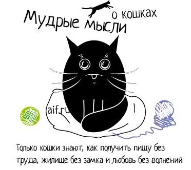 http://img0.liveinternet.ru/images/attach/c/7/97/956/97956270_d0ba5fd17c0b75db85a0808fbf3190390.jpg