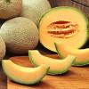 ������ Cantaloupes-100x100 (100x100, 6Kb)