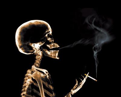 Влияние курения на различные системы организма (400x320, 26Kb)