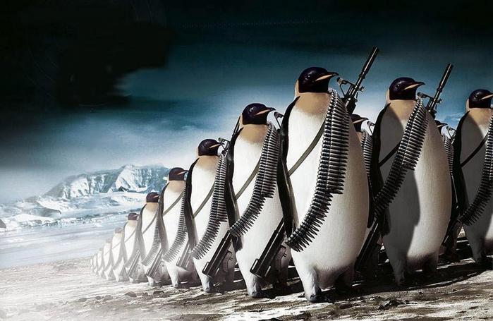 3855635_pingvinyatina (700x455, 235Kb)