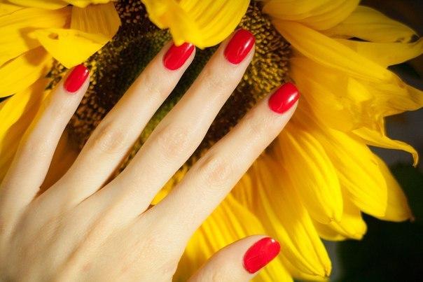 Ногти дизайн лето фото