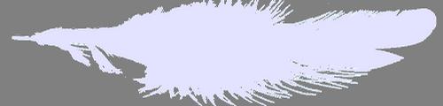 01 (500x120, 73Kb)