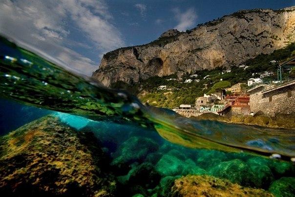 подводная фотография Alessandro Catuogno (604x403, 72Kb)