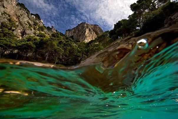 подводная фотография Alessandro Catuogno 1 (604x403, 65Kb)