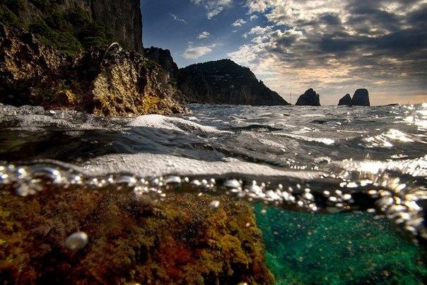 подводная фотография Alessandro Catuogno 3 (604x403, 79Kb)