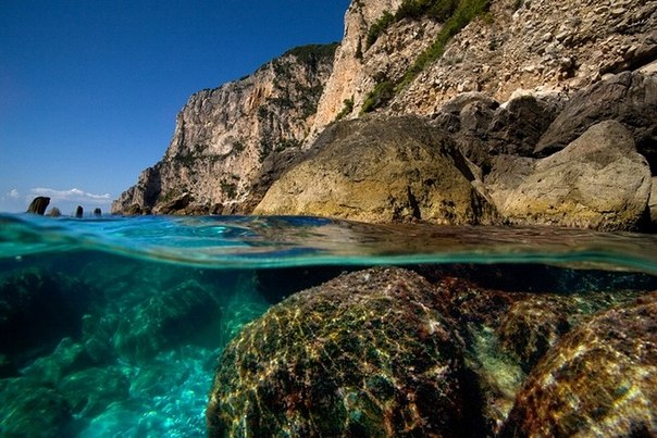 подводная фотография Alessandro Catuogno 7 (604x403, 85Kb)