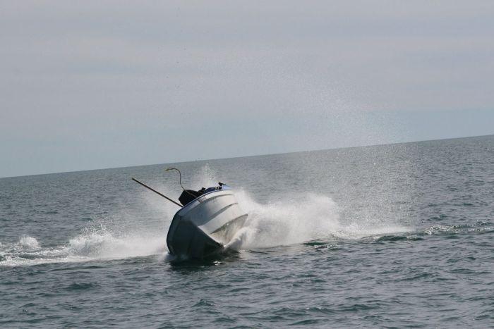 кит налетел на лодку фото 1 (700x467, 39Kb)