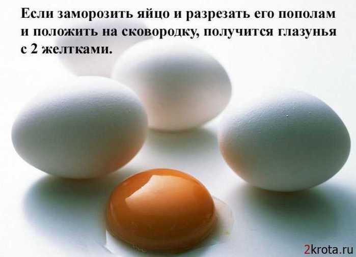 1271771409_1271344527_1271334251_1271275097_fakty_2 (700x505, 22Kb)