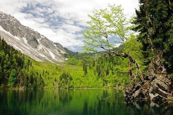Абхазия. Озеро Малая Рица располагается на высоте 1248 м над уровнем моря (600x400, 77Kb)