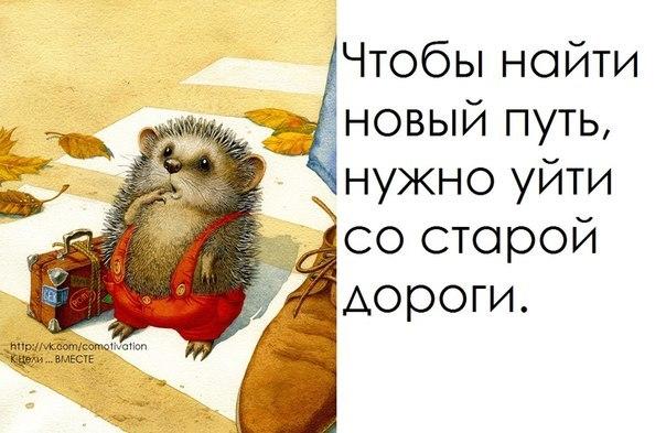 4278666_RMo3onaiWSk (604x393, 58Kb)