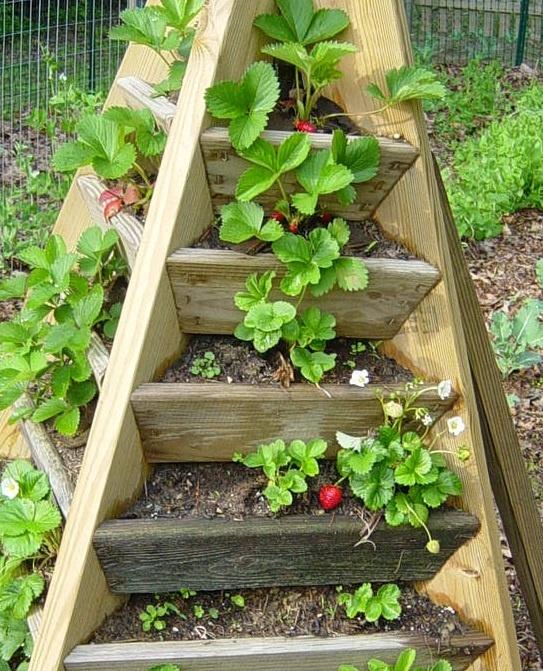 Интересные идеи для сада своими руками с