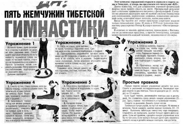 гимнастика возрождение