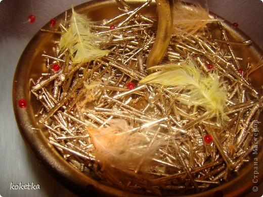топиарии птичьи гнезда (6) (520x390, 83Kb)