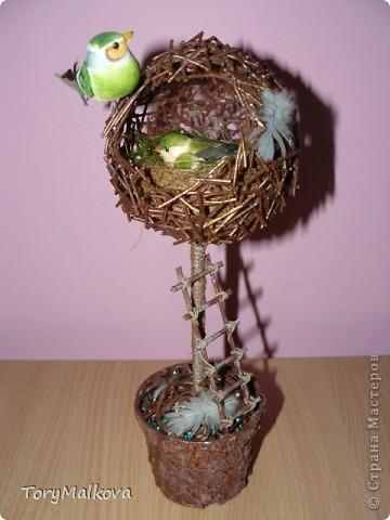 топиарии птичьи гнезда (21) (360x480, 39Kb)