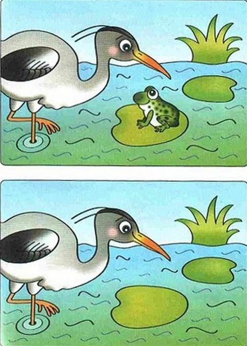 картинки для детей найди отличия (13) (484x678, 793Kb)