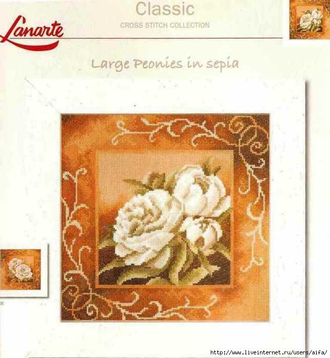 Lanarte 35037 (645x700, 164Kb)