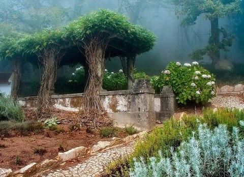 Старый сад в городе Синтра, Португалия (480x348, 65Kb)