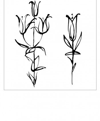 Floral-11-350x425 (350x425, 20Kb)