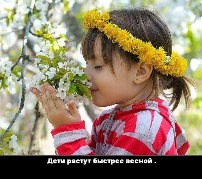 1337694668_1335423314_fakt_07 (700x620, 118Kb)