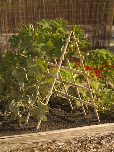 Идеи для огорода самое интересное в