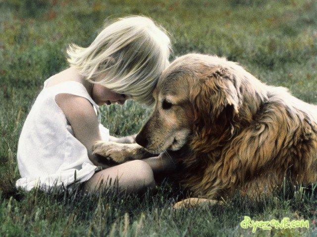 собака и ребенок (640x479, 85Kb)