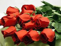 розы (200x150, 10Kb)