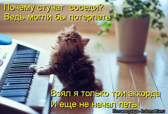 kotomatritsa_LY (640x434, 51Kb)