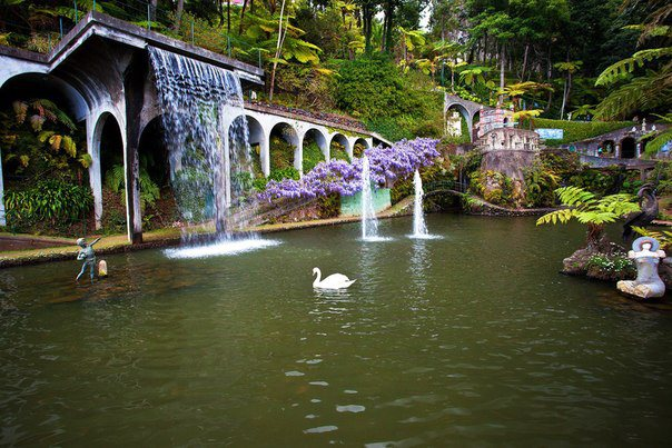 В Тропическом саду Дворца Монте, который расположен на вершине холма Монте с потрясающими видами над заливом Фуншал, Мадейра, Португалия (604x403, 78Kb)