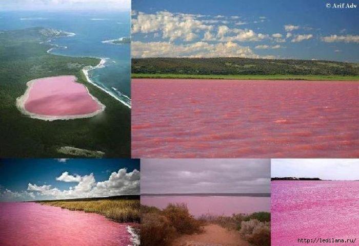 розовое озеро- (700x481, 143Kb)
