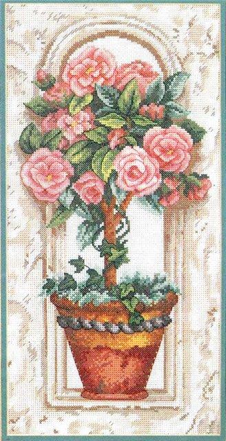 розовое дерево в горшке