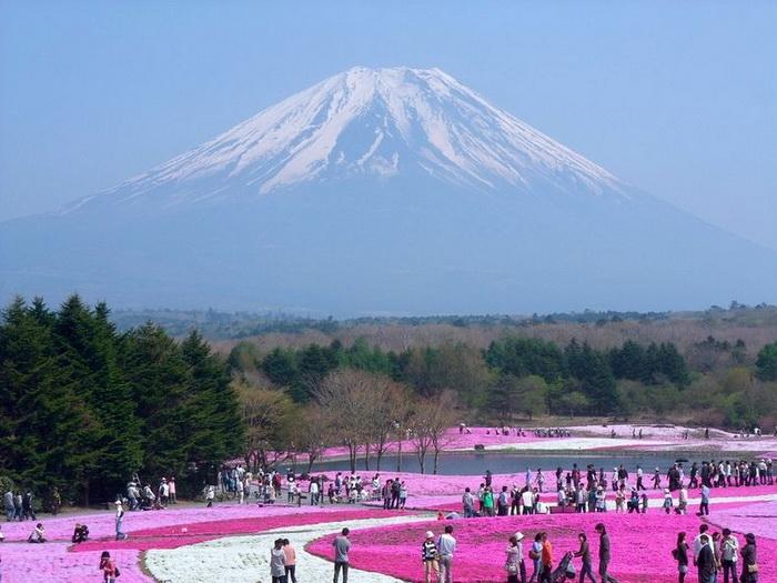 японский парк (700x525, 128Kb)