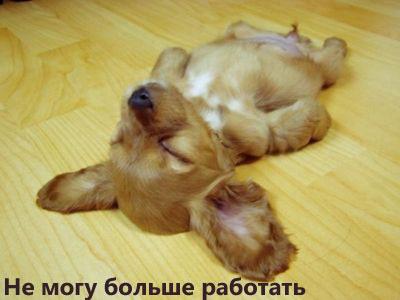 radionetplus_ru_zabavno_1255 (400x300, 23Kb)