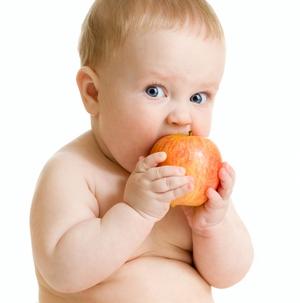 Приблизительно с пяти месяцев необходимо вводить в рацион ребенка первый прикорм, так как организму малыша...