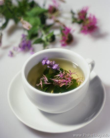 tea-herbal-tea-green-tea_thumb (450x563, 44Kb)