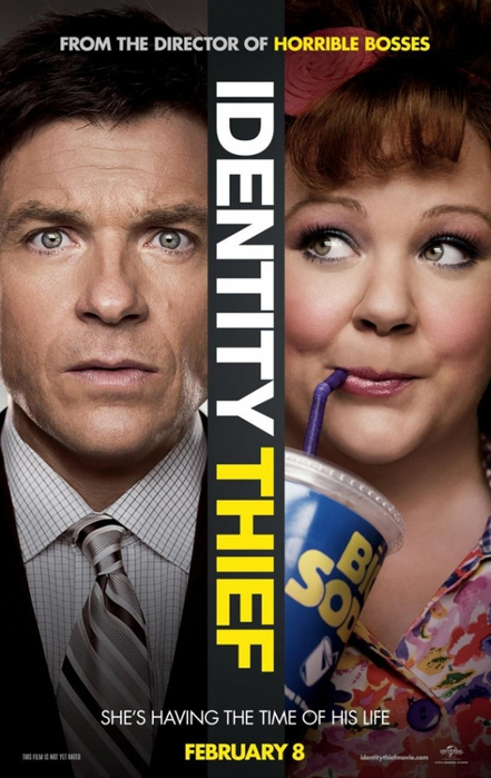 4121583_identitythief_poster3 (441x700, 220Kb)