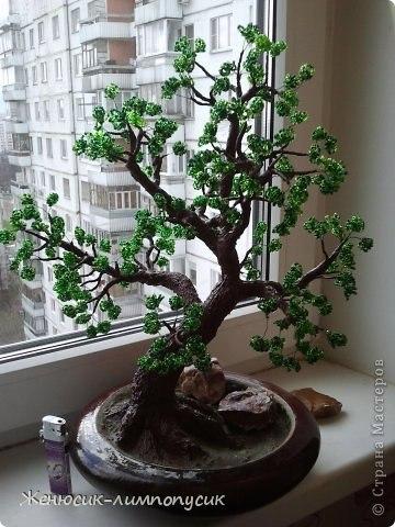 Бонсай из бисера Мастер-Класс, плетем дерево своими.