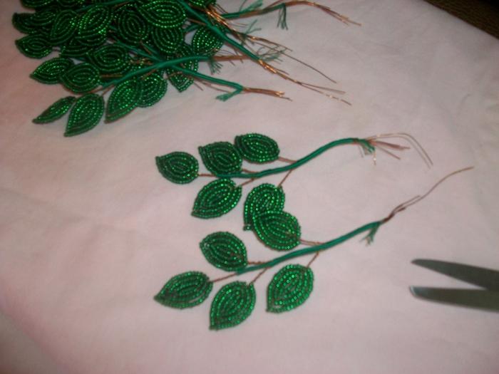 Зеленые листья глицинии из