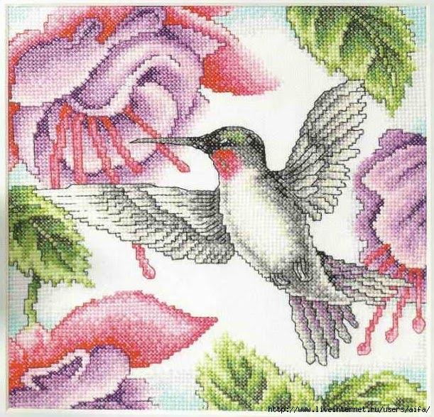 Колибри и фуксия Вышивка