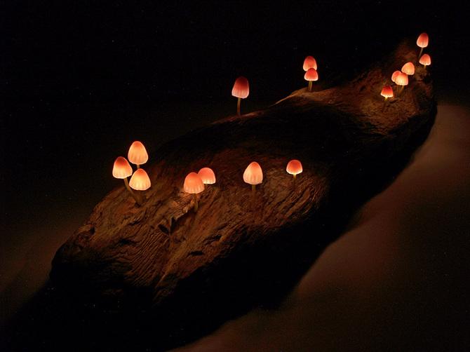 дизайнерский светильник Юкио Такано 14 (670x502, 113Kb)