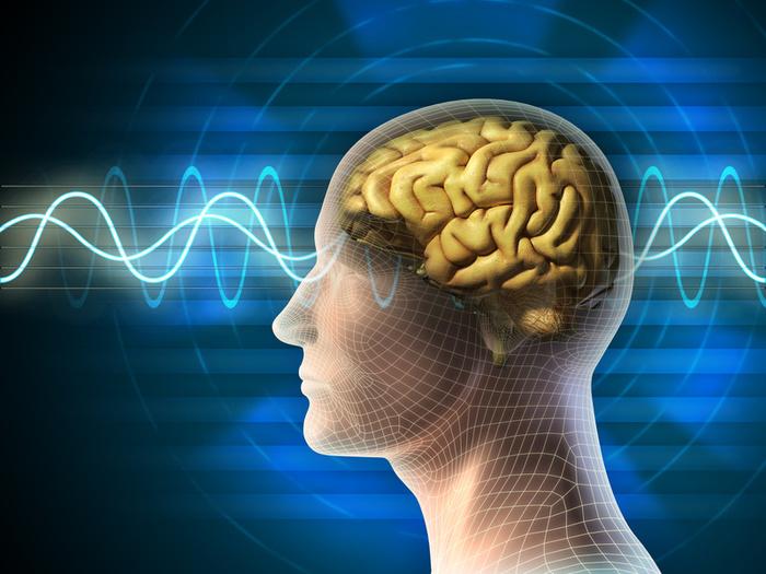 brainwaves (700x525, 156Kb)